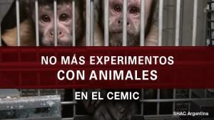 thumbnail_cemic_peticion